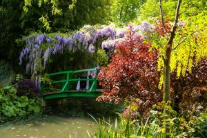 Half-day guided tour of Monet's house in Giverny from Paris
